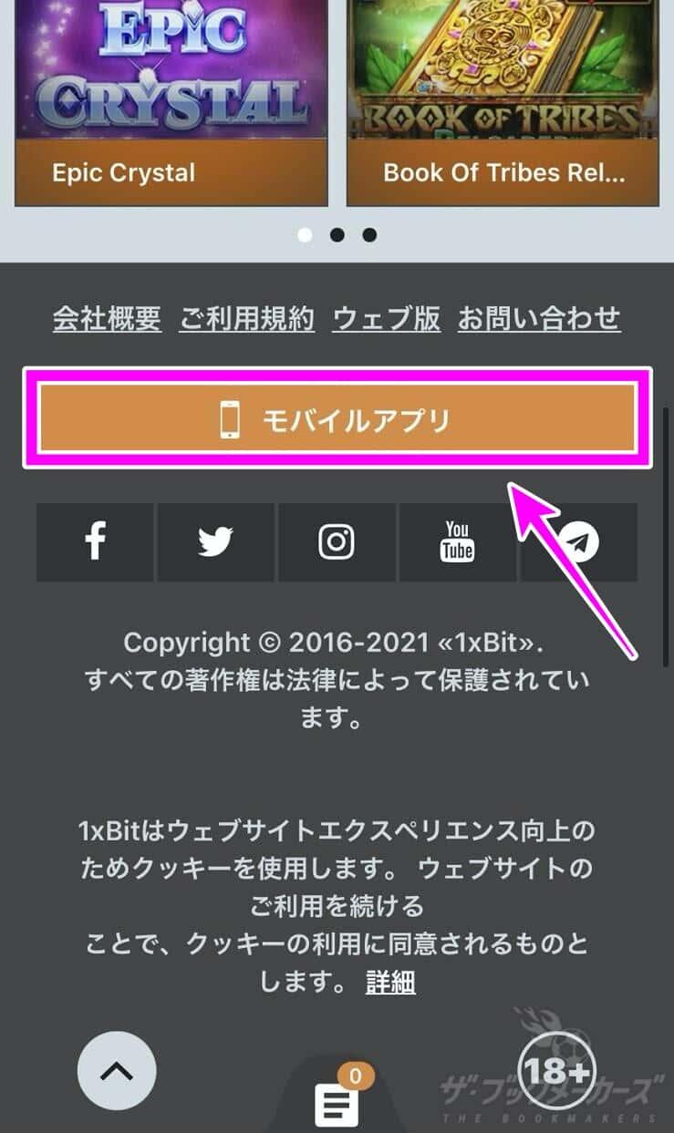 【1xBit】登録方法・入金・出金・ログイン・使い方ガイド!