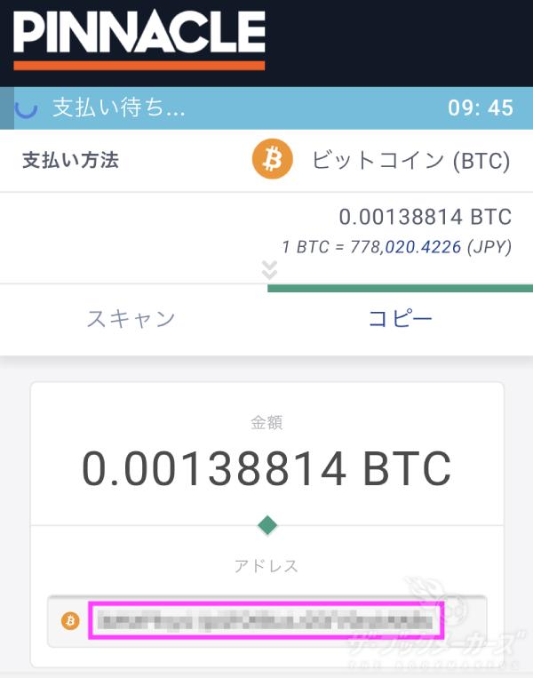 ビットコイン 送金 10日以上