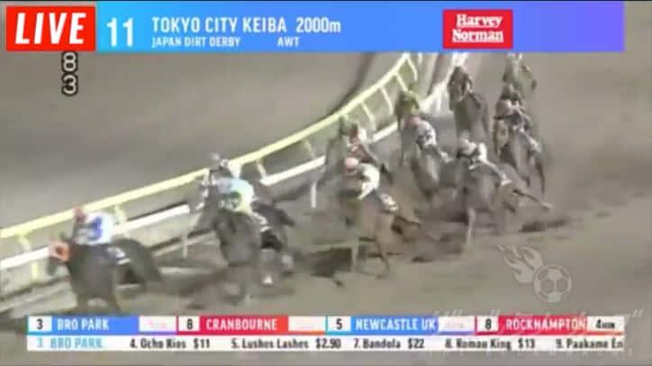 東京シティ競馬ライブ