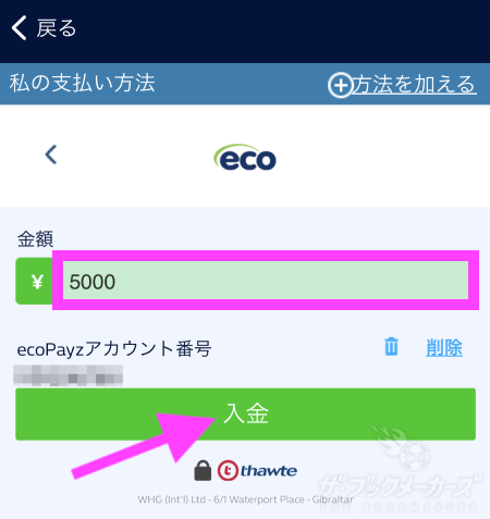 WHエコペイズで入金