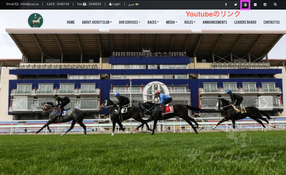 サウジアラビア競馬(海外競馬レースの視聴方法)